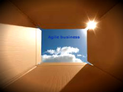 Business models and processes for agile selling