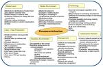 Commercialisation risks